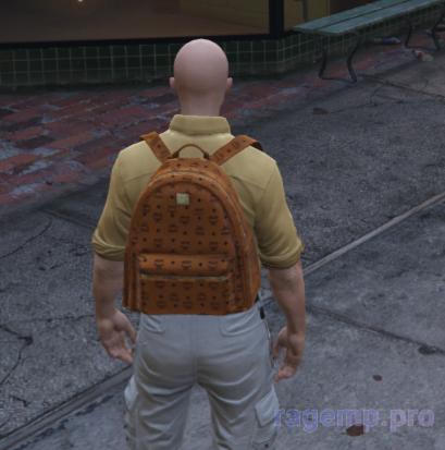 bag_91.png