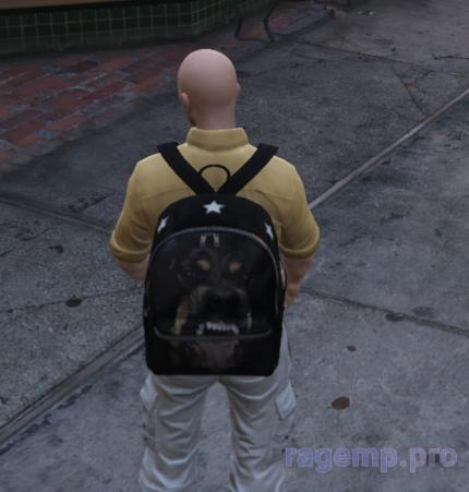 bag_93.png