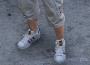shoes_100.png