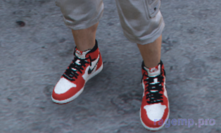 shoes_99.png